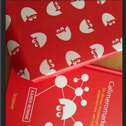 Blog voorverkoop Managementboek.nl 250pix